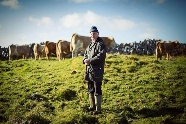 Farming as a business: who are Ukrainian farmers and what problems do they  face? | The Ukrainian Stockbreeders Association