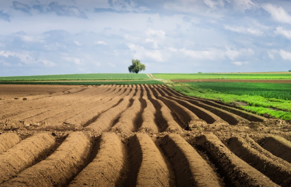 Farmers own 10% of all agricultural land in Ukraine