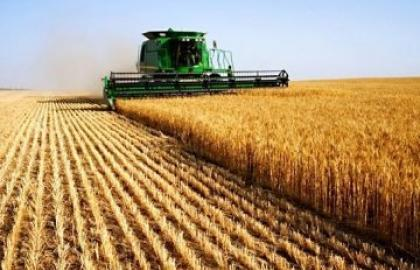 Agriculture has become the most profitable branch of the Ukrainian economy in 2017