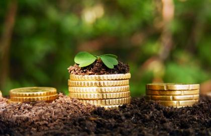 Volume of financing of the agrarian sector is proposed to increase by 2% in 2019