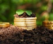 Agrarians received 2.31 billion UAH transfers from the budget for the period of 9 months