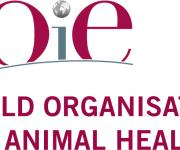 Epizootic situation on especially dangerous diseases of animals in the world