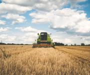 Agricultural production has declined in Ukraine