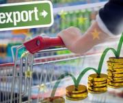 What records did Ukraine beat in agrarian exports in 2017