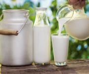 Small farms are increasing milk supply for processing