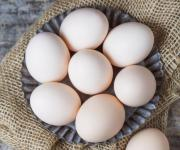 38% of eggs in Europe are Ukrainian