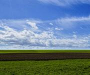 The price of 1 hectare of land in Ukraine has been announced