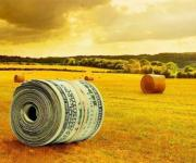 The volume of foreign investment in the Ukrainian agricultural sector in January-March amounted to            $ 11.7 billion