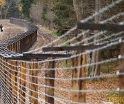 Bulgaria will build a fence against ASF on the Romanian border