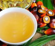 Verkhovna Rada expects to forbid the use of palm oil in products
