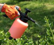 The Security Service of Ukraine seized counterfeit pesticides for 18 million UAH