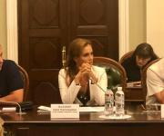 Iryna Palamar raised the issue of illegal takeover prevention at the round table of the Agricultural Committee of the Verkhovna Rada