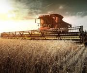 Investments in the agricultural sector of Ukraine increased by 10% over the first half of the year