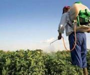 Ukraine needs a new law to regulate the pesticide market