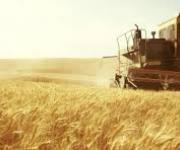 The parliament registered the agrarian strategy of Ukraine