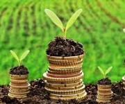 Amount of budget support for the agricultural sector can be increased to 12.4 billion UAH