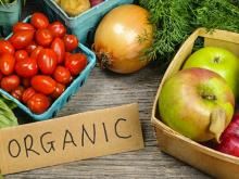 Ukraine has the opportunity to increase the production of organic products and its exports to the EU