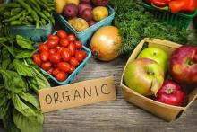 Ukraine will be able to increase exports of organic products