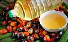 """It is necessary to ban not palm oil, but trans fats"" - expert"